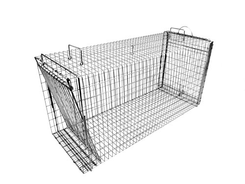 Tomahawk Rigid Chicken and Rooster Trap by Tomahawk