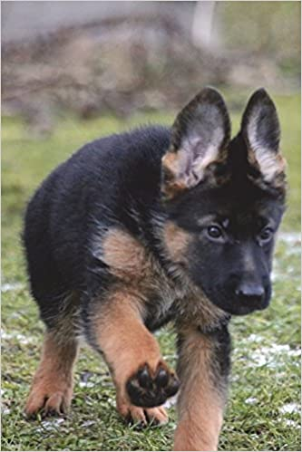 German Shepherd Puppy In The Grass Journal 150 Page Lined Notebook Diary Amazon Co Uk Image Cool 9781537157412 Books