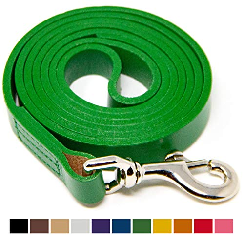 Logical Leather 4 Foot Dog Leash - Best for Training - Water Resistant Heavy Full Grain Leather Lead - Green