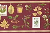 Wallpaper Border - Summer Herbs Wallpaper Border SPB5713
