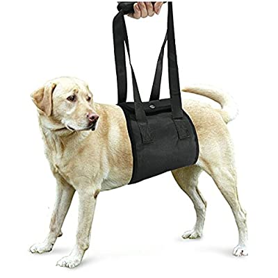 Dog Lift Support Rehabilitation Harness with Handle Assist Sling Helps Medium and Large Breed Mobility to Go Up /Down Stairs, Get in/off Vehicle