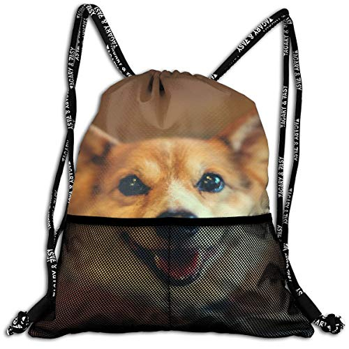 Polyester Drawstring Bag Theft Proof Water Resistant Large Size String Bag Large Capacity For Basketball, Volleyball, Sports & Workout Gear (Lovely Corgi Dog - Chair Bean Volleyball Bag