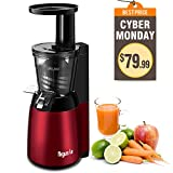 Argus Le Slow Juicer Easy Clean 150W Cold Press Masticating Juicer (Small Image)