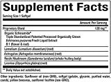 Natural Factors - Anti-V Formula with Echinamide, Immune System Support, 60 Soft Gels