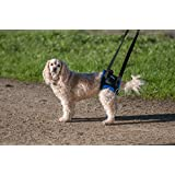 """Walkabout back end support harness walking aid (large 27-31"""")"""