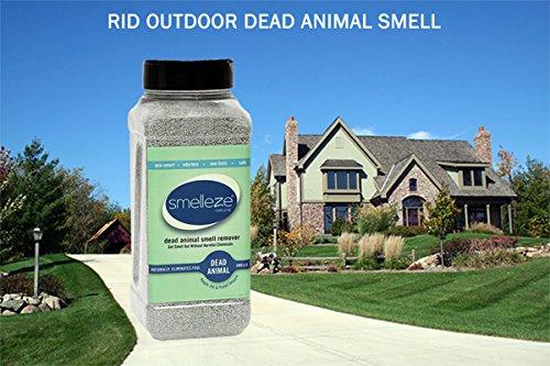 SMELLEZE Natural Dead Animal Odor Removal Powder- 2 lbs.: Eliminate Dead Rat, Mice, Squirrel, Chipmunk, Raccoon & Bat Smell. Safe for Indoor Use by SMELLEZE (Image #2)