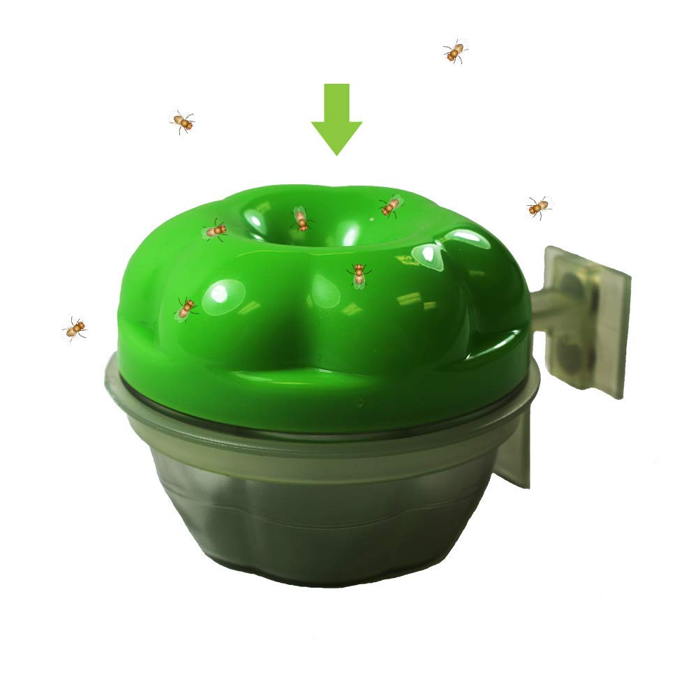 GREENSTRIKE Reusable Fruit Fly Trap with Holder 10048ECOM