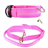 Pet Dog Puppy LED Collar and Dog Leash Set, Cute Pink, With Collar Charms and ID Tags,Small