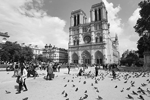 Notre Dame Cathedral Pictures - Tourists Outside Notre Dame Cathedral in Paris Photo Art Print Poster 36x24 inch