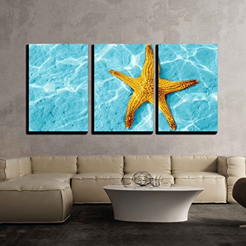 wall26 - 3 Piece Canvas Wall Art - Starfish in Blue Water with Light Reflection. - Modern Home Decor Stretched and Framed Ready to Hang - 16