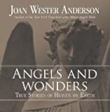 Angels and Wonders, Joan Wester Anderson, 0829427333