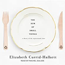 The Sum of Small Things: A Theory of the Aspirational Class Audiobook by Elizabeth Currid-Halkett Narrated by Rachel Dulude