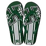 NCAA Hawaii Rainbow Warriors Big Logo Flip Flop, Large, Green
