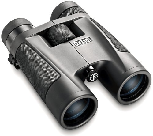 Bushnell 8-16 x 40 Zoom Powerview Roof Prism Binocular