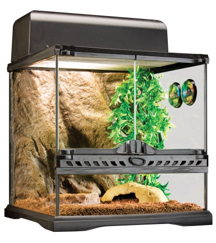 Exo Terra Invertebrate Terrarium Habitat Kit by Exo Terra