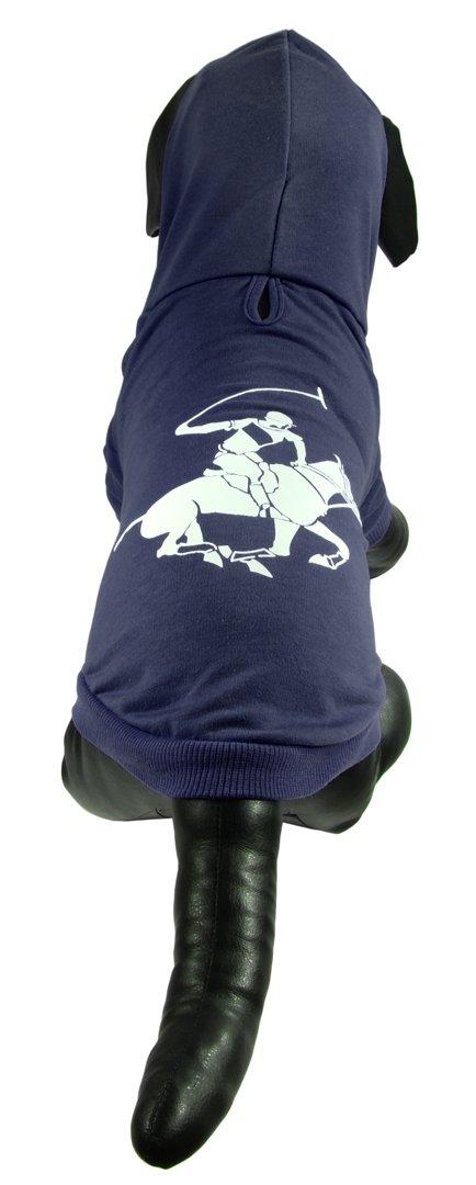 Sudadera Marino Hills Capucha Polo Con Perro Club Beverly Azul TRvIv