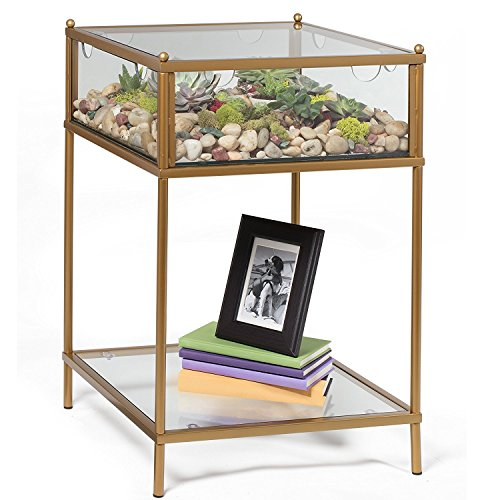 Terrarium Display Side Table Plants Rock Garden Metal Glass Coffee End Stand New