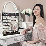 Earring Holder Stand Jewelry Stand,120 Holes and 52