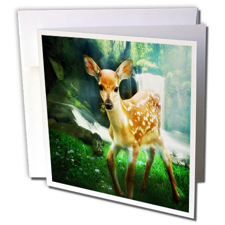 3dRose Spotted Fawn sweet young deer near a waterfall in nature. - Greeting Cards, 6 x 6 inches, set of 6 (Sweet Fawn)