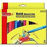 Camlin Kokuyo Bold Sketch Pen, 12 Shades (Multicolor)