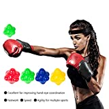 ZAKSKI Dual Level Reaction Ball Training Set
