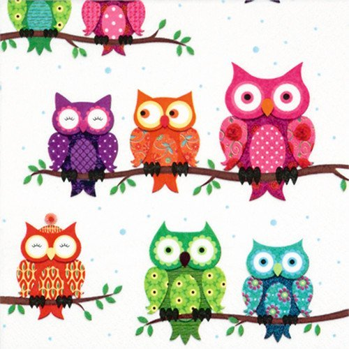 Colourful Owls Patterned Paper Party Lunch Napkins x 20 B00II2H3RK
