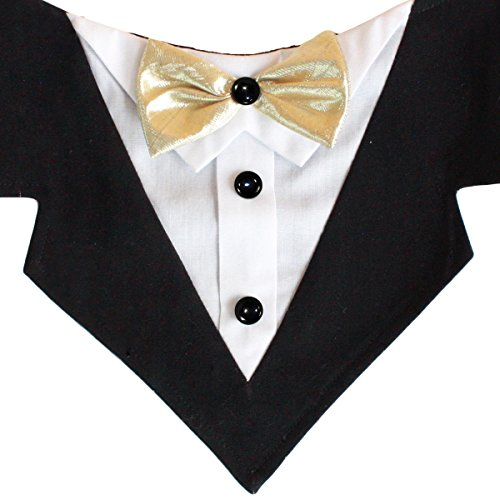 Tail Trends Mr. Darcy Formal Dog Bandana with Gold Ribbon Bow Tie (Large)