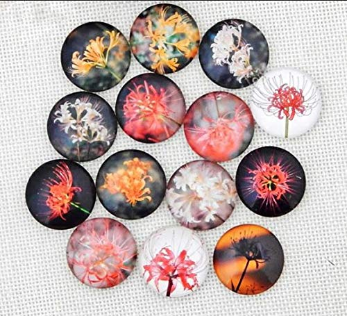 - Laliva Accessories - QIUBOSS 20PCS 12mm Vintage Mix Flower Round Photo Glass Cabochon Pattern Fit Cameo Base Setting for Jewelry DIY Flatback Rings - (Color: Cluster Amaryllis, Size: 12mm)