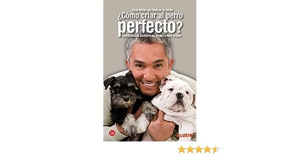Como Criar Al Perro Perfecto Cesar Millan Pdf