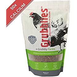 Grubblies - a Daily Nutritious Snack for Chickens - 100% Natural Oven-dried Grubs Farm-grown in the USA under USDA Regulations
