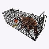 "Humane Live Animal Trap 28""X12""X12"" Nuisance Rodent Control Groundhog Squirrel Raccoon Mole Gopher Opossum Skunk LARGE Spay Feral Stray Cats Rescue Wild Rabbits Catch Release Cage Outdoor Professional"