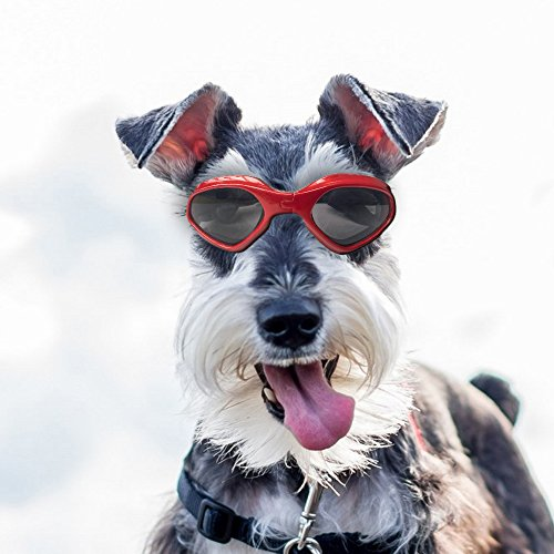 Homesupplier Dog Goggles Sunglasses Waterproof Windproof UV Protection For Small Medium Dogs and Cats Glasses - Vet Recommended Eye Protection(Red) (Balinese Hat)