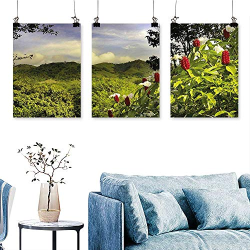 (SCOCICI1588 Three Consecutive Painting Frameless Scenery Costa Rica Countryside Greenery Tropic Accents Botanical Green Red Violet Blue Artwork for Wall Decor Triptych 30 INCH X 47 INCH X 3PCS)