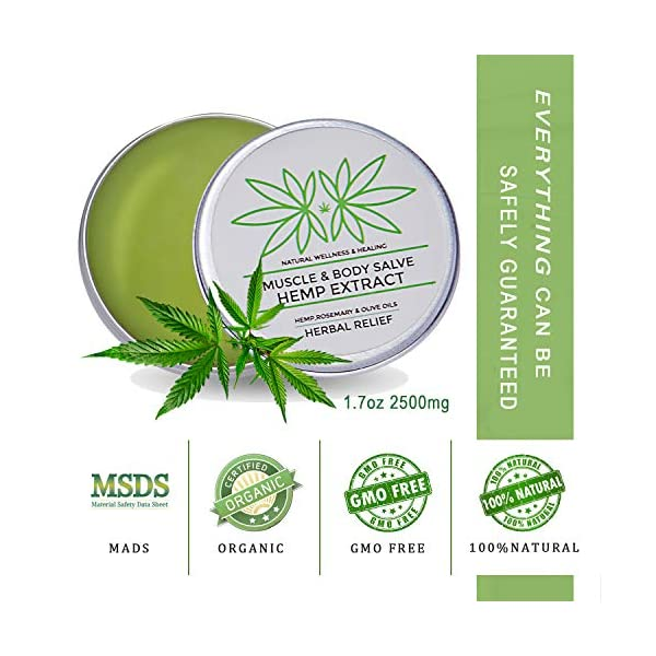 2 Pack Hemp Pain Relief Balm, 5000mg Hemp Extract, Rosemary, Arnica, Natural Pain Relief, Anti-Inflammatory for Muscles, Arthritis Pain, Fast Acting Hemp Salve (2 × 50g)