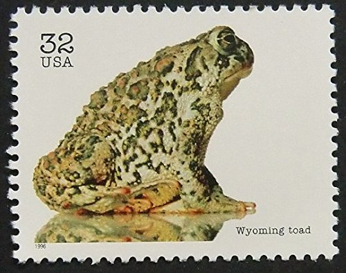 Wyoming Toad USA -Framed Postage Stamp Art 9783