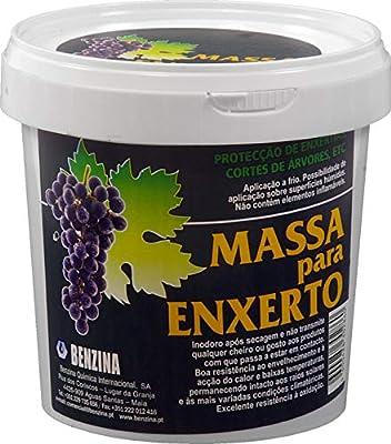 Benzina 367797 Pasta cicatrizante injertos 500 Gr, Blanco: Amazon ...