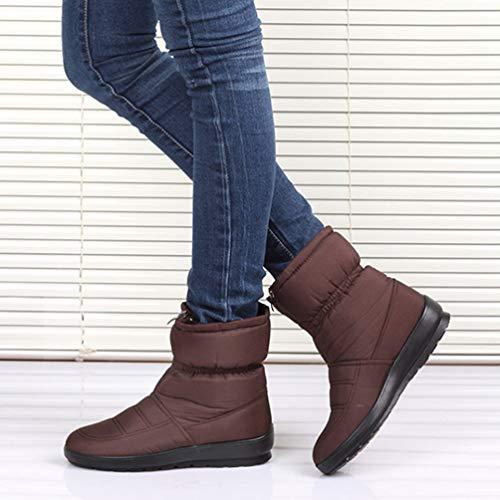 Inverno Fondo Impermeabile Caviglia Stivali Qianliuk Spesso Piattaforma Scarpe Caldo Alla Brown Donne Neve OR0nn4EI