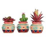Collections Etc Faux Succulents Potted Plant Set Arrangements in Southwest Pattern Pots