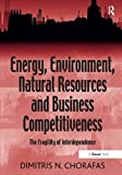 img - for Energy, Environment, Natural Resources and Business Competitiveness: The Fragility of Interdependence book / textbook / text book