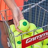 Gamma Sports Kids Training