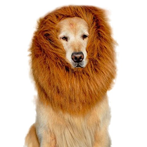 Festival Supreme Costumes - Fancy Lion Mane Wig Pet Costume Adjustable Washable Comfortable Cute Lion Hair Halloween Dress Up Party Clothes with Ears for Big Medium Small Dog Cat (60-80cm (23.6