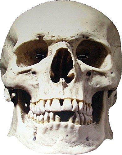Halloween Skull - Scary Card Face