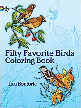 Fifty Favorite Birds Coloring Book Dover Nature Coloring Book - Bird-coloring-book