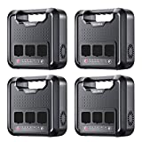 Allsees Case of 4 Packs, Power Station –300W|220Wh...