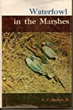 Waterfowl in the Marshes, A. C. Becker, 0498069486