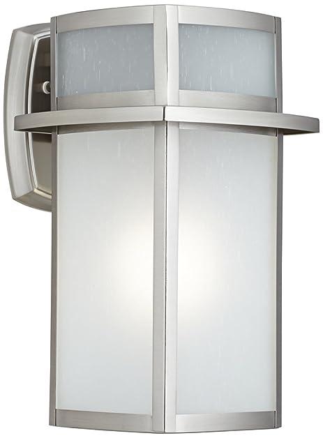 Delevan 13 high brushed nickel outdoor wall light amazon delevan 13quot high brushed nickel outdoor wall light workwithnaturefo