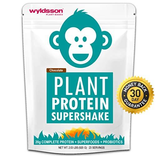 tein Powder (2lb) with Probiotics, Superfoods & Organic Fruits, Veg & Greens | No Added Sugar, Dairy-Free, Gluten-Free, Non-GMO, Plant-Based Protein Shake (Chocolate) ()