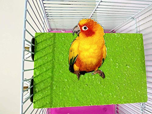 Bird Wood Perch Stand Rough Sand Parrot Colorful Platform Toy Chew Bite Paw Grinding for Macaw African Grey Budgies…