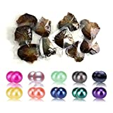 10PC Oysters with Love Wish Twin Pearls Round Inside Freshwater Cultured 10 Colors Total 20 Pearls (7-8mm)