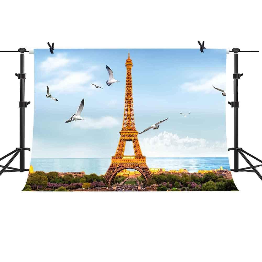 MME 10X7フィート パリ 背景 エッフェル塔 背景 写真ブース 小道具 PME709   B07GLBKRF4
